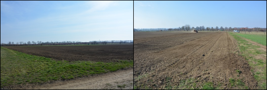Plocha připravená k výsevu; Zapravení semínek do půdy pomocí traktoru s bránami